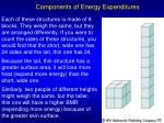 components of energy expenditures