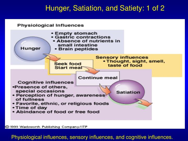 Hunger, Satiation, and Satiety: 1 of 2