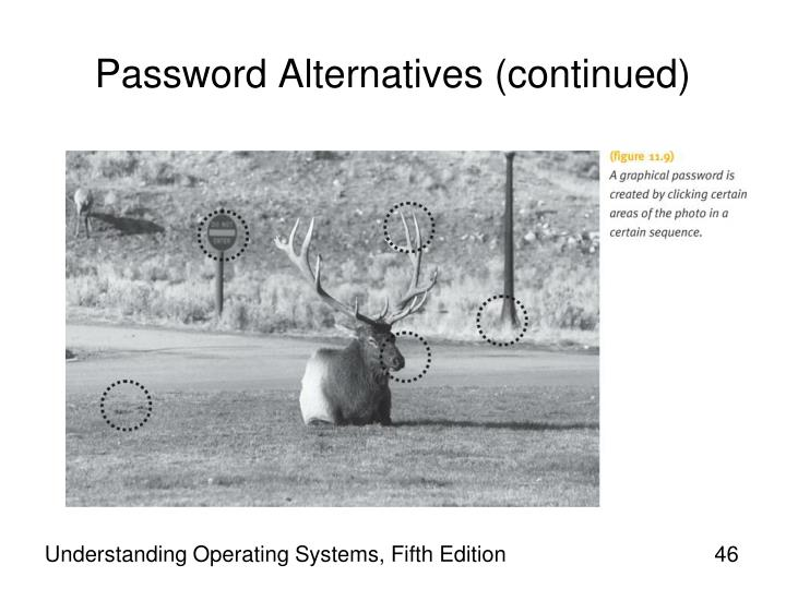 Password Alternatives (continued)