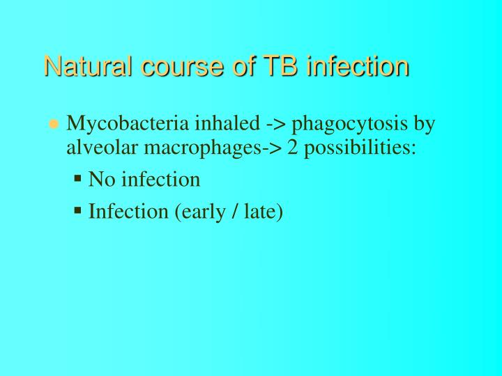 Natural course of TB infection