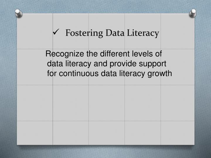 Fostering Data Literacy