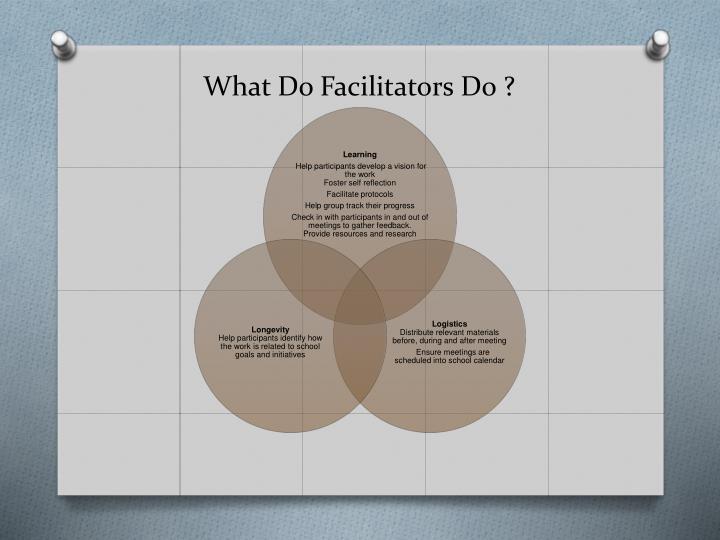 What Do Facilitators Do ?