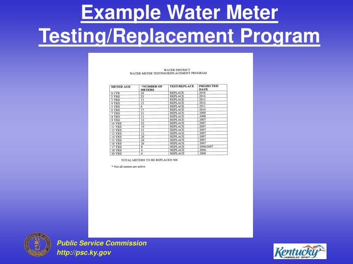 Example Water Meter Testing/Replacement Program