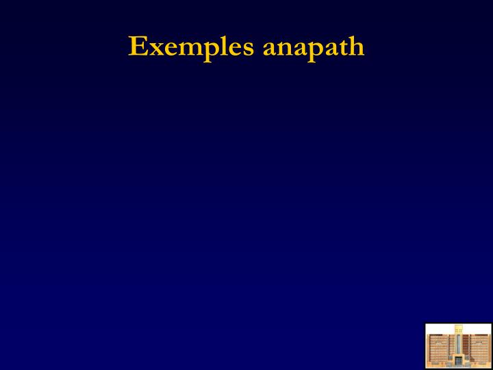 Exemples anapath