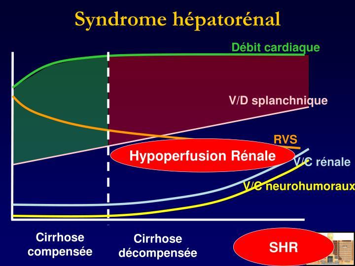 Syndrome hépatorénal