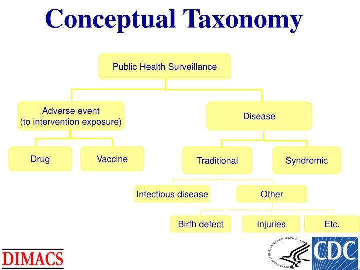 Conceptual Taxonomy