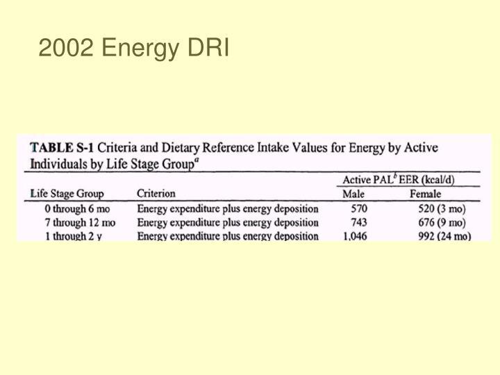 2002 Energy DRI