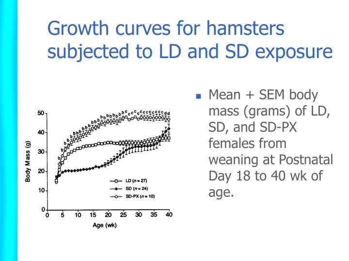 Growth curves for hamsters subjected to LD and SD exposure