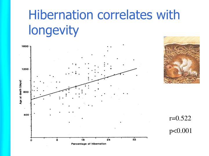 Hibernation correlates with longevity