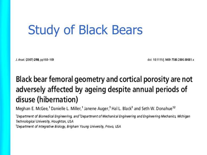 Study of Black Bears