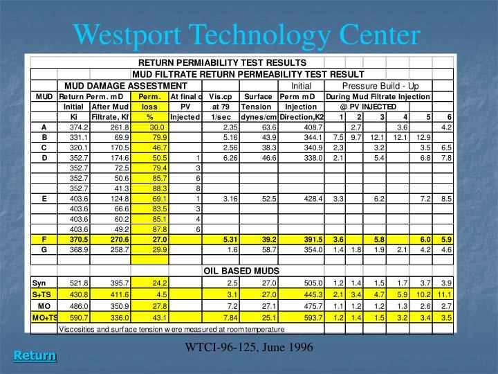 WTCI-96-125, June 1996