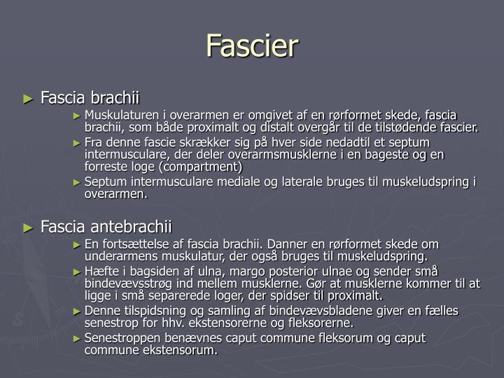 Fascier