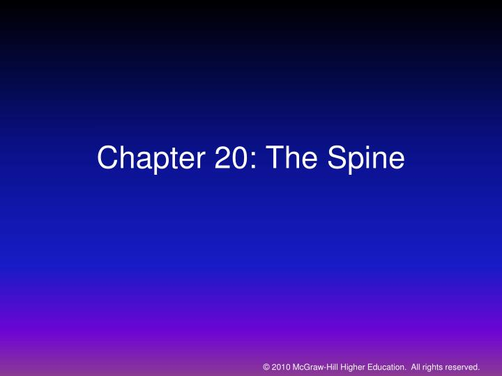 Chapter 20 the spine