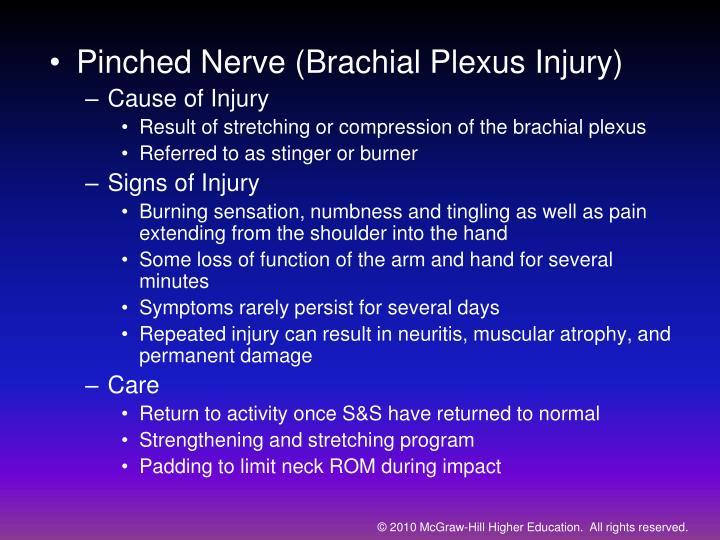 Pinched Nerve (Brachial Plexus Injury)