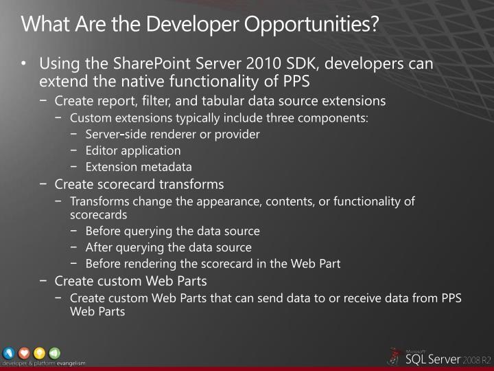 What Are the Developer Opportunities?