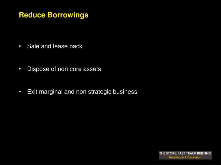 Reduce Borrowings