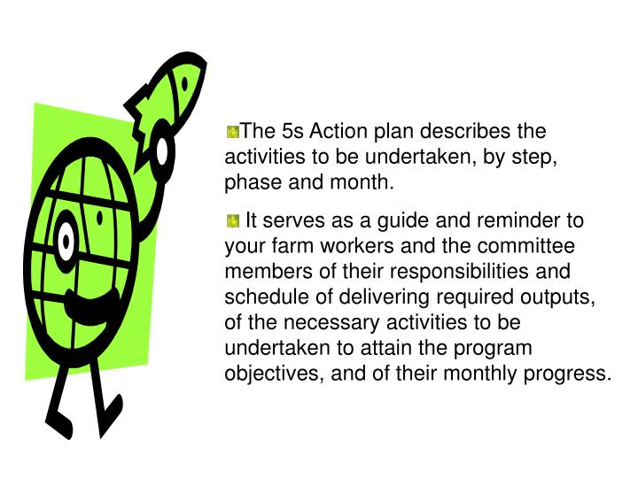 The 5s Action plan describes the activities to be undertaken, by step, phase and month.