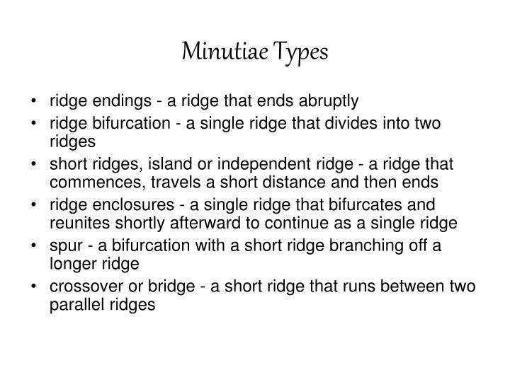 Minutiae Types