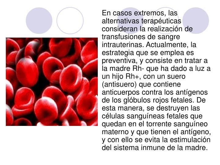 En casos extremos, las alternativas terapéuticas consideran la realización de transfusiones de sangre intrauterinas. Actualmente, la estrategia que se emplea es preventiva, y consiste en tratar a la madre Rh- que ha dado a luz a un hijo Rh+, con un suero (antisuero) que contiene anticuerpos contra los antígenos de los glóbulos rojos fetales. De esta manera, se destruyen las células sanguíneas fetales que quedan en el torrente sanguíneo materno y que tienen el antígeno, y con ello se evita la estimulación del sistema inmune de la madre.