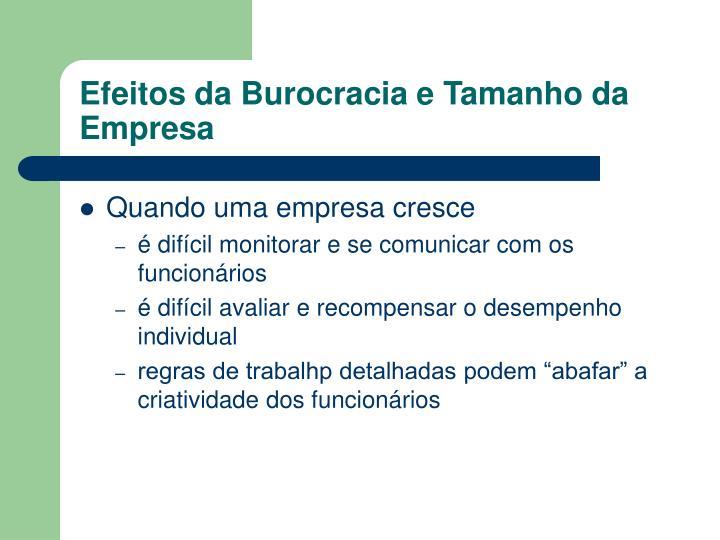 Efeitos da Burocracia e Tamanho da Empresa