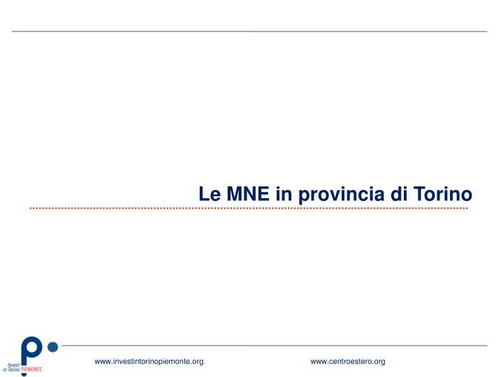Le MNE in provincia di Torino