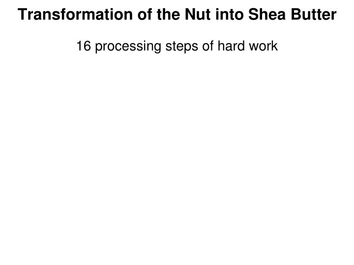 Transformation of the Nut into Shea Butter