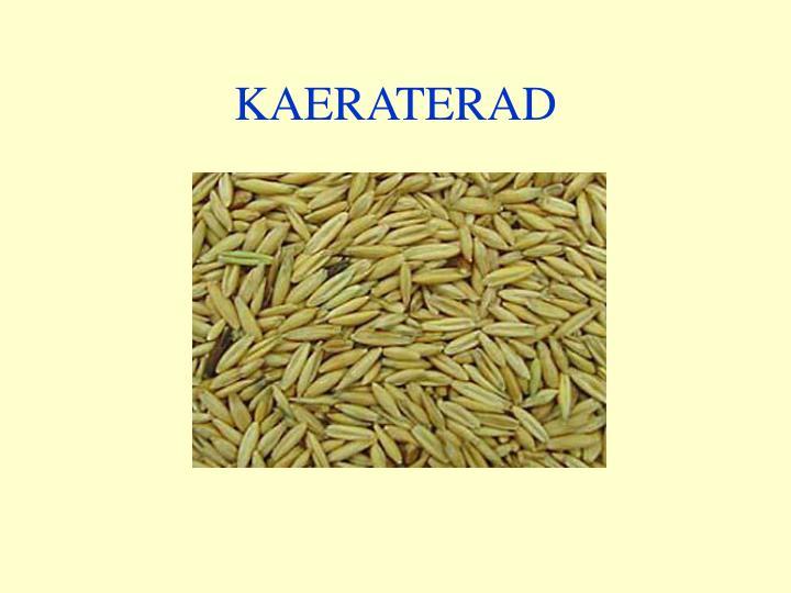 KAERATERAD