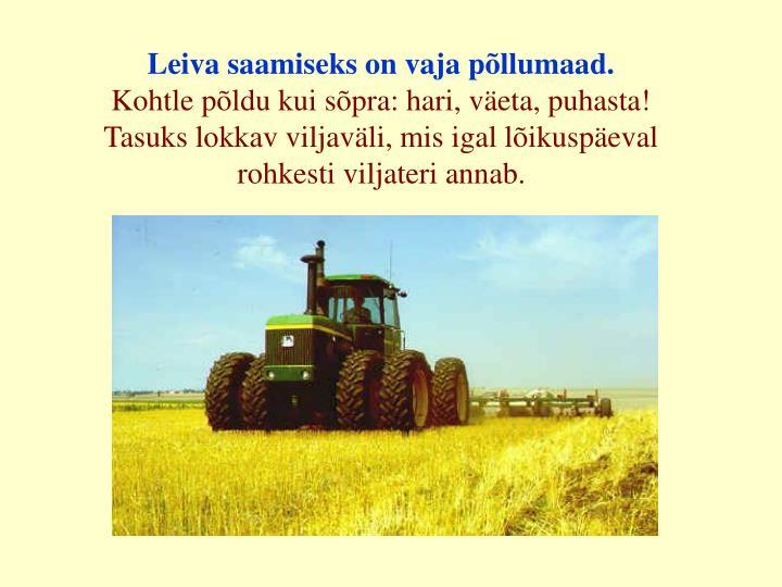 Leiva saamiseks on vaja põllumaad.
