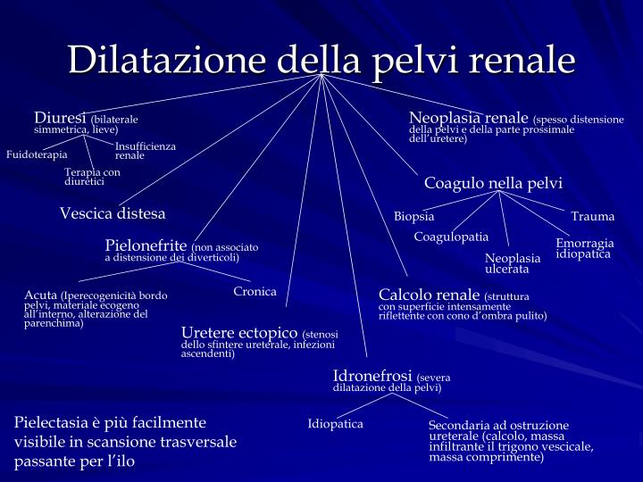 Dilatazione della pelvi renale