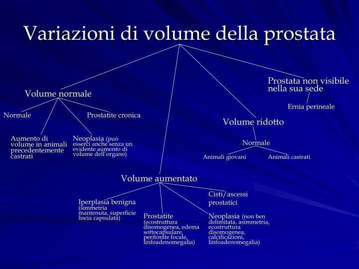 Variazioni di volume della prostata
