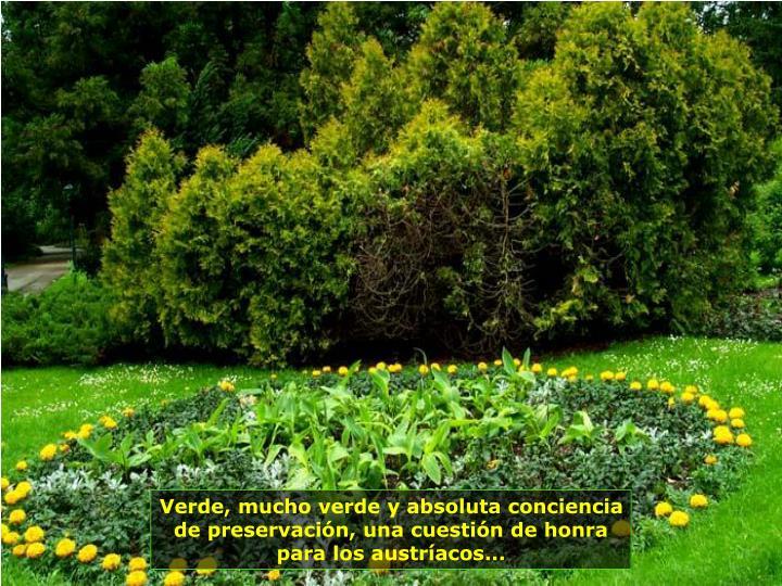 Verde, mucho verde y absoluta conciencia de preservación, una cuestión de honra para los austríacos...