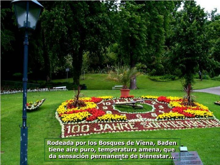 Rodeada por los Bosques de Viena, Baden tiene aire puro, temperatura amena, que