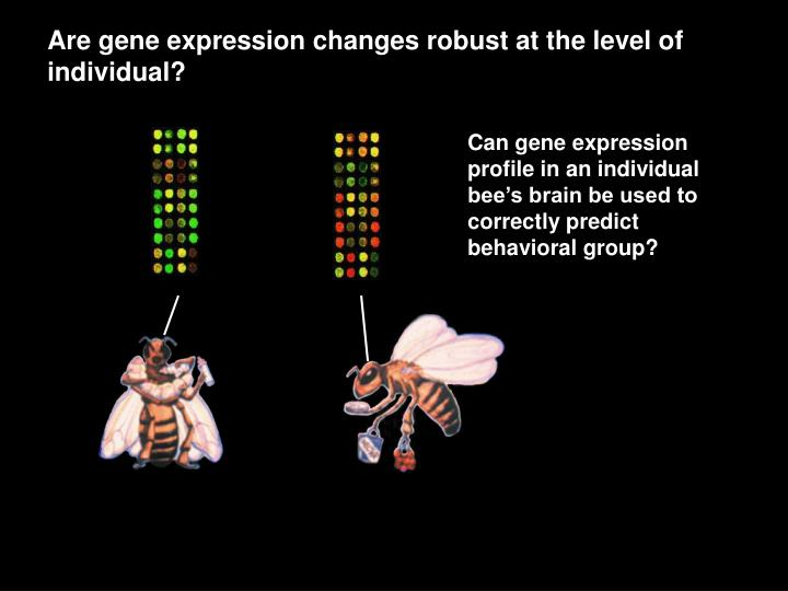 Are gene expression changes robust at the level of individual?