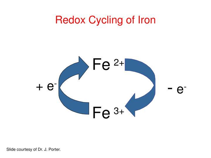 Redox Cycling of Iron