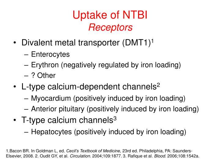 Uptake of NTBI