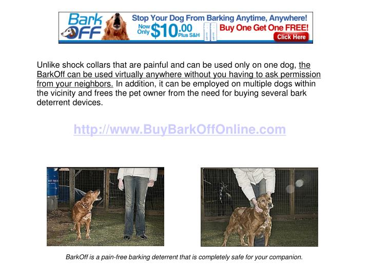 Unlike shock collars that are painful and can be used only on one dog,