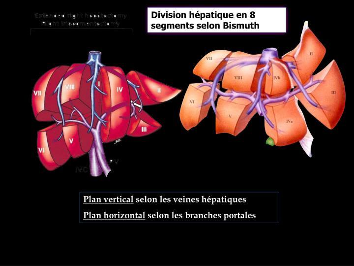 Division hépatique en 8 segments selon Bismuth