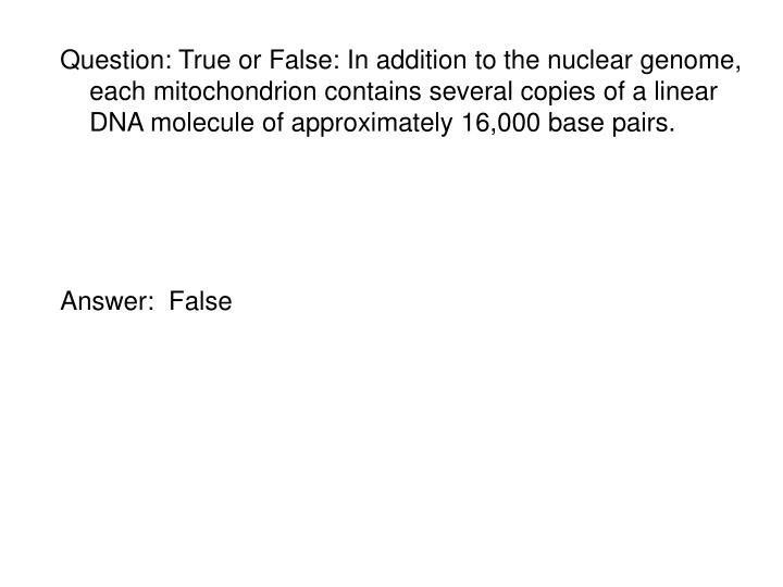 Question: True or False: In addition to the nuclear genome, each mitochondrion contains several copies of a linear DNA molecule of approximately 16,000 base pairs.
