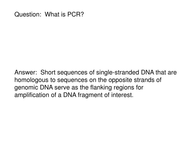 Question:  What is PCR?
