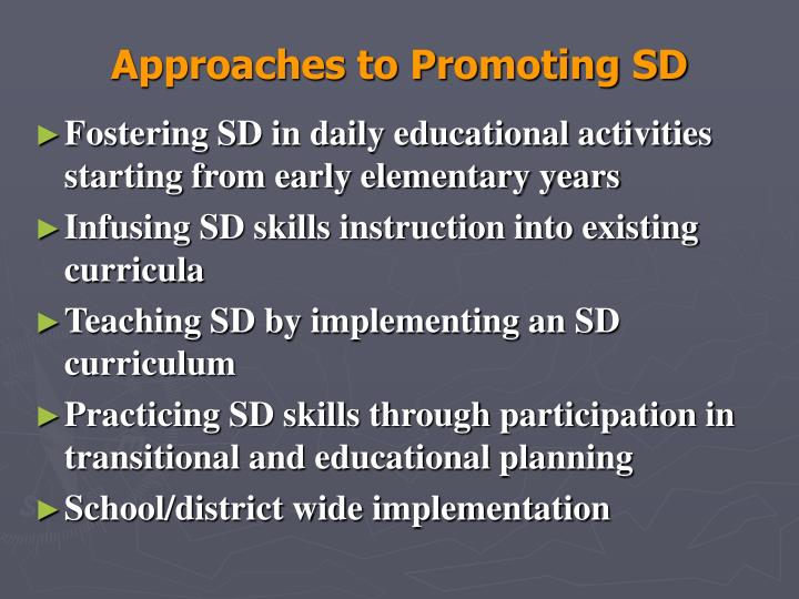Approaches to Promoting SD