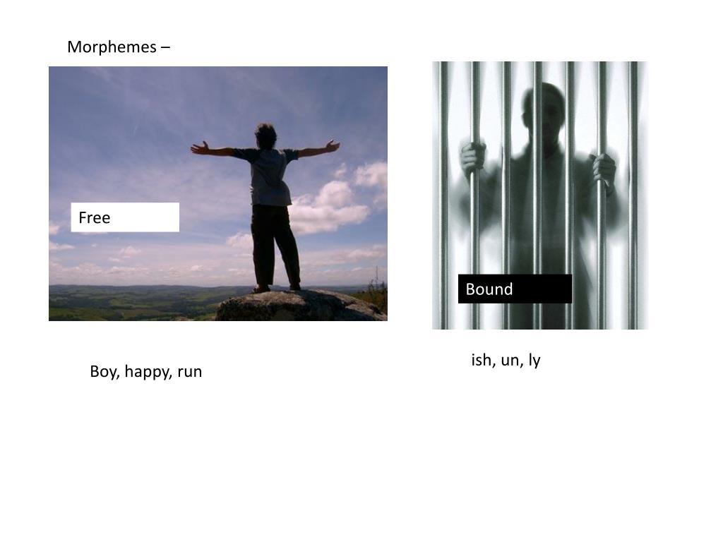 Morphemes –