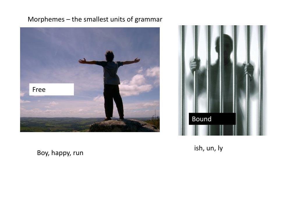 Morphemes – the smallest units of grammar