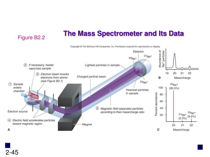 The Mass Spectrometer and Its Data
