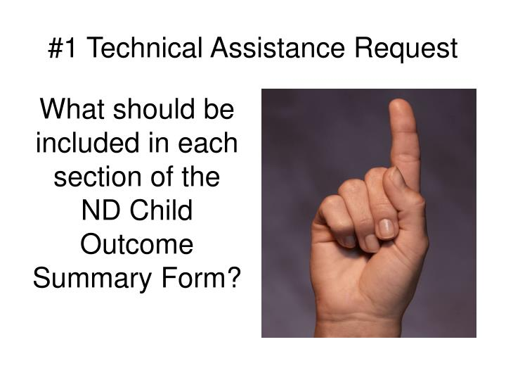 #1 Technical Assistance Request
