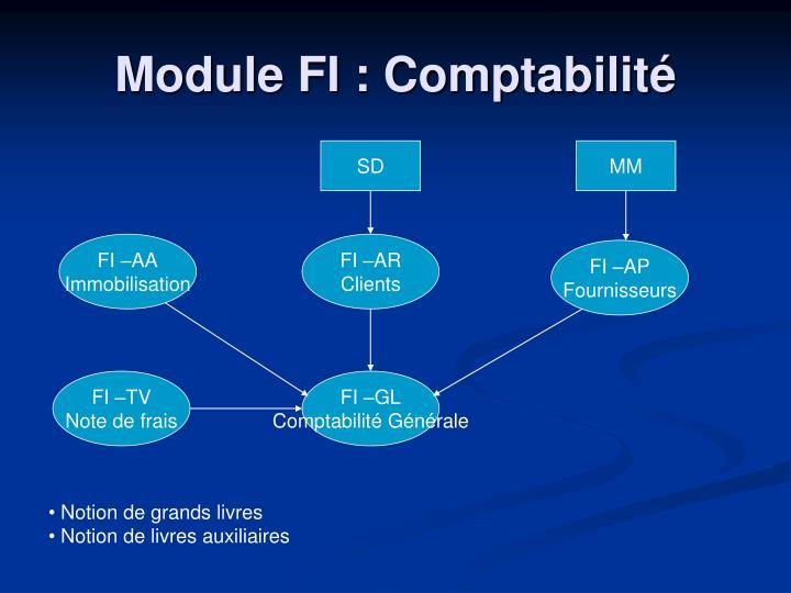 Module FI : Comptabilité