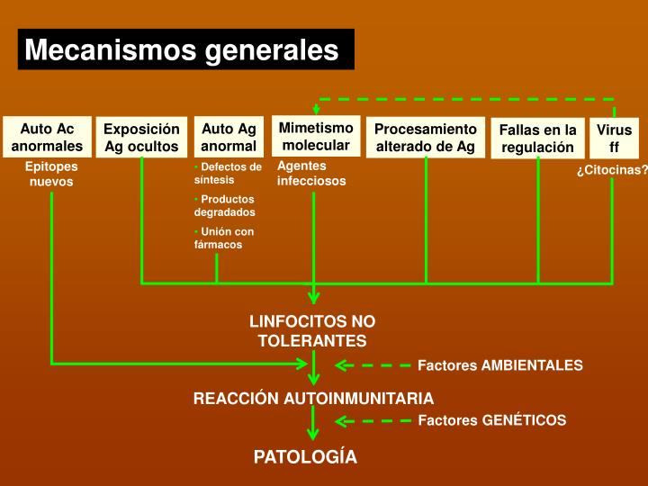 Mecanismos generales