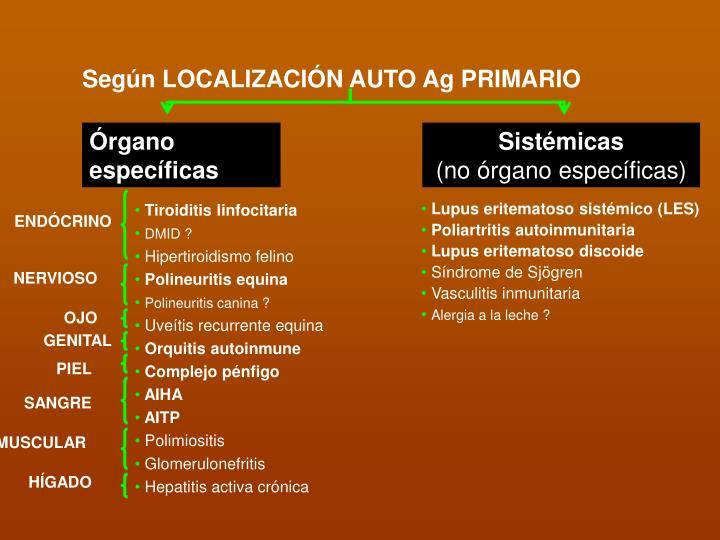 Según LOCALIZACIÓN AUTO Ag PRIMARIO
