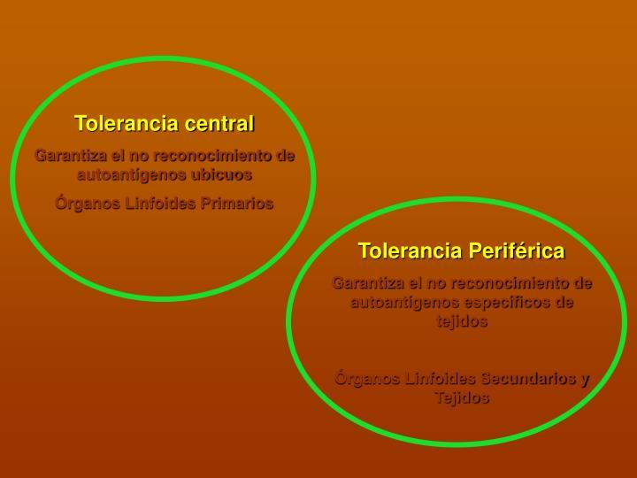 Tolerancia central
