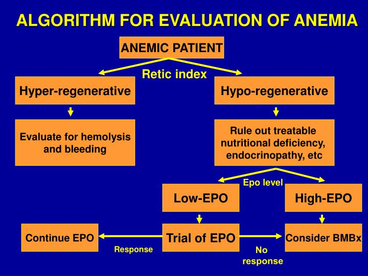 ALGORITHM FOR EVALUATION OF ANEMIA