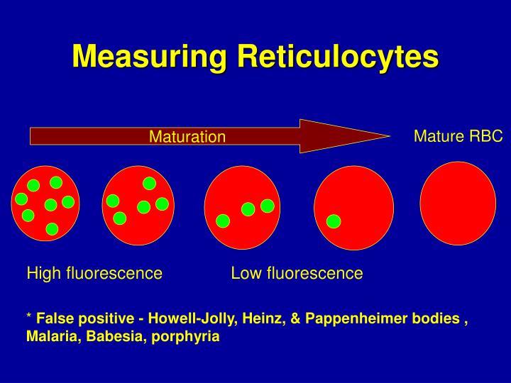 Measuring Reticulocytes